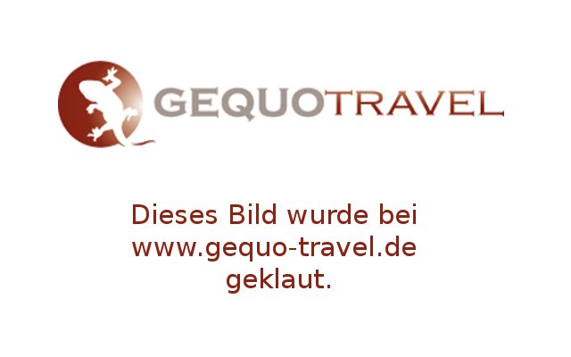 GEQUO Travel